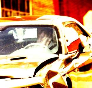 joel unite car sassy